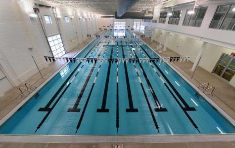 Norwalk Girls Swim and Dive Team Season Preview