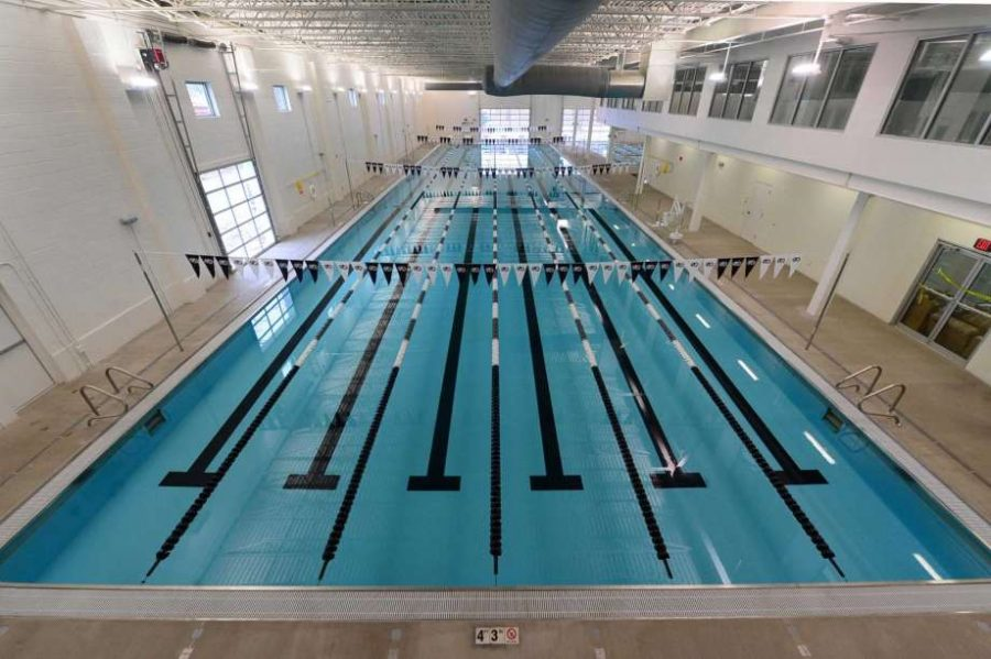 Norwalk Girls Swim and Dive Team Season Preview