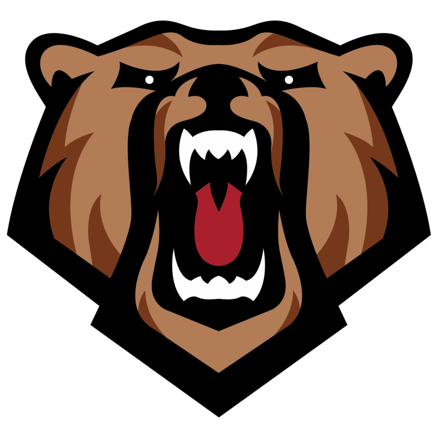 LocalLive -- Home of the Norwalk Bears!