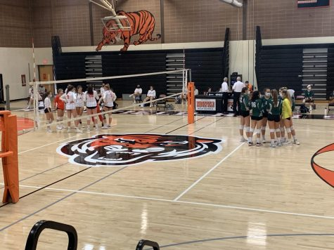 Bears volleyball falls short in 2nd round of the playoffs