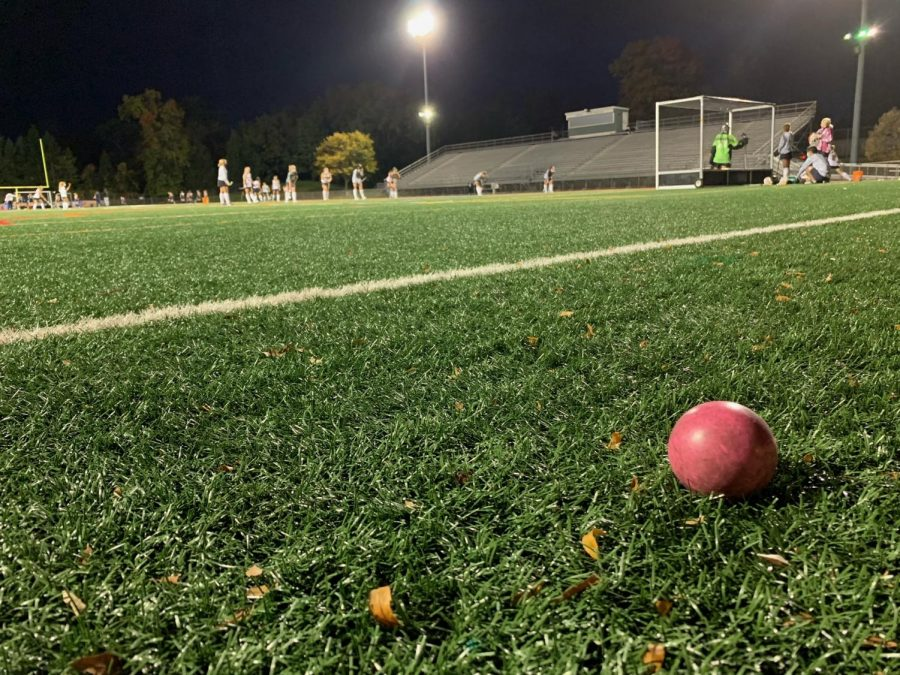This is a picture of of field hockey ball